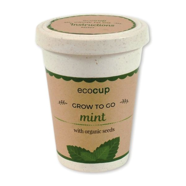 Eco Seed Cup