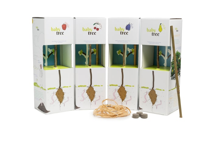 Mini Tree Kits